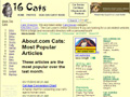 16 Cats Photos and Stories