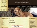 Boerboel Breeder UK - Bouduccia Boerboel